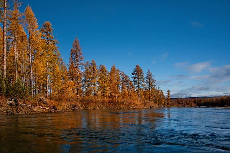 Река Колыма осенью